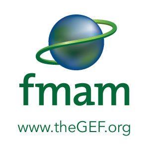 GEF_Logo ES – UNDP/GEF CLME+ P...
